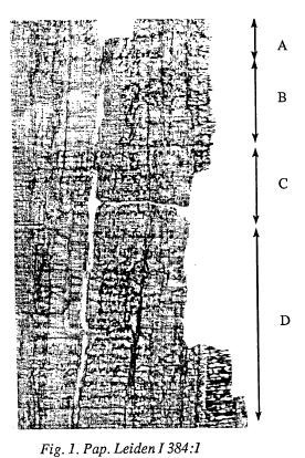Papyrus at Leiden University, Netherlands