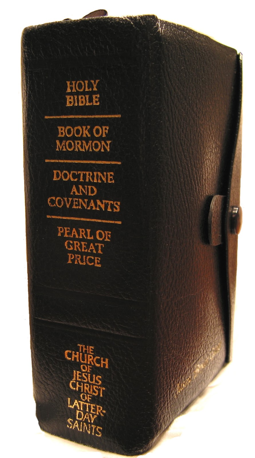 The Mormon Bible